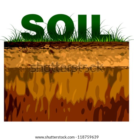 structure of soil cut on black
