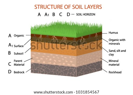 Structure soil layers diagram vector illustration stock for What are the different layers of soil