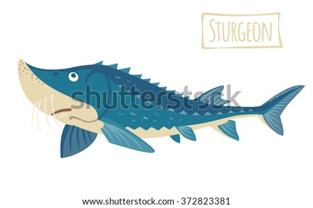 Sturgeon, vector cartoon illustration