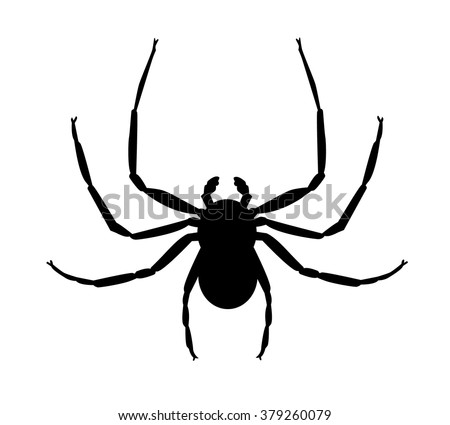 Stylised silhouette illustration of a crab spider