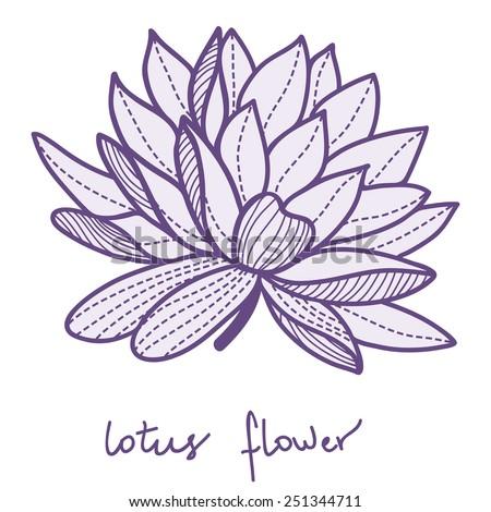 Stylish lotus flower on white background - stock vector