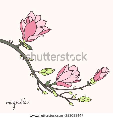 Stylish magnolia flower brunch - stock vector