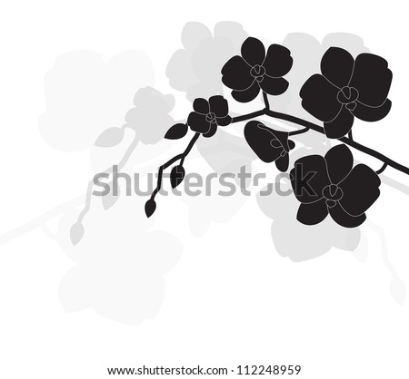 stylized black orchid on a white background - stock vector