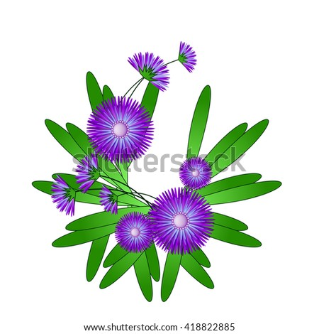 Stylized branch thistle flowers. Vector illustration. Isolate. - stock vector
