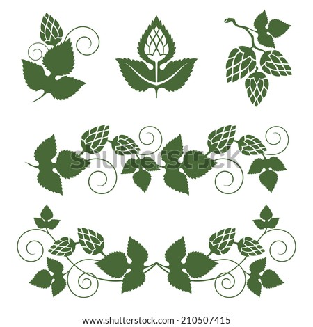 stylized hop  borders and design elements - stock vector