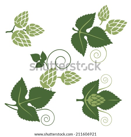 stylized hop elements for your designs - stock vector