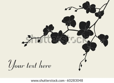 Stylized orchid branch design with copy-space, vector illustration