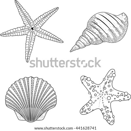Stylized vector shell zen tangle doodle. Vector illustration  - stock vector