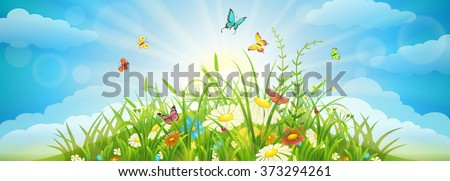 Summer and spring meadow background with grass, flowers, butterflies and sky - stock vector