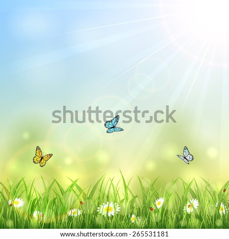 Summer background with butterflies, Sun and flowers in the grass, illustration. - stock vector