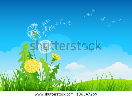 Summer background with dandelion - stock vector