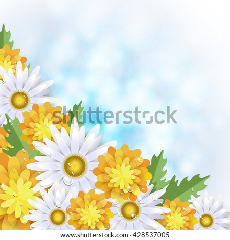 Summer background with dandelions and daisies. Vector illustration
