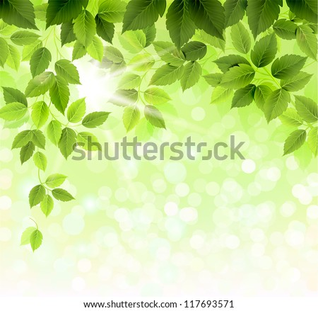 Summer branch with fresh green leaves - stock vector