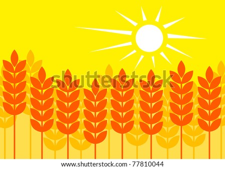 Summer cornfield - stock vector