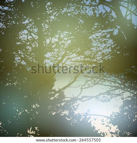 summer design, forest, nature green wood sunlight natural green background. Vector - stock vector