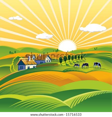 Summer evening rural landscape - stock vector