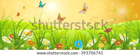 Summer meadow banner with flowers, grass and butterflies - stock vector