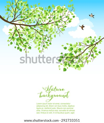 Summer nature background with sky and branch. Copy space - stock vector