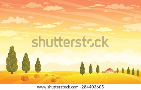 Summer rural landscape with yellow field and green trees on a sunset sky background. Vector nature illustration.  - stock vector