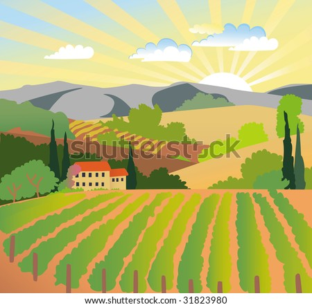 Summer solar rural landscape with a sunset, vineyard and mountains - stock vector