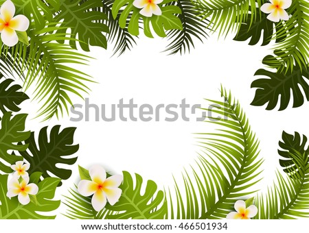 Summer Tropic Leafs Background Frame Floral Stock Vector 466501934 ...