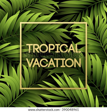 Summer tropical background of palm leaves.  - stock vector