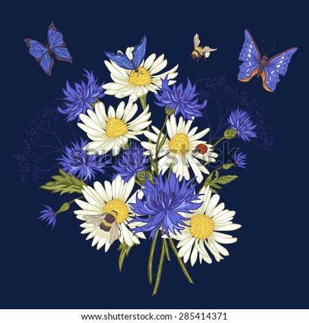 Summer Vintage Floral Bouquet. Greeting Card with Blooming Chamomile Ladybird Daisies Cornflowers Bumblebee Bee and Blue Butterflies. Vector Illustration on Dark Background - stock vector