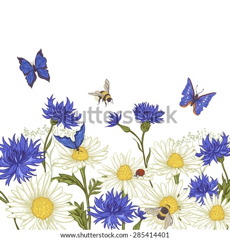 Summer Vintage Greeting Card with Blooming Chamomile Daisies Ladybird Cornflowers Bumblebee Bee and Blue Butterflies. Vector Illustration on White Background - stock vector