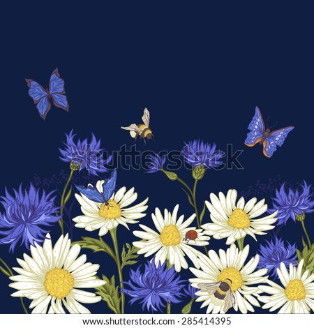 Summer Vintage Greeting Card with Blooming Chamomile Ladybird Daisies Cornflowers Bumblebee Bee and Blue Butterflies. Vector Illustration on Dark Background - stock vector