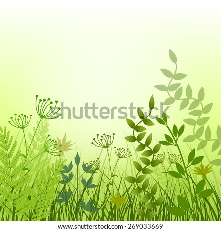 Summmer meadow background, vector illustration