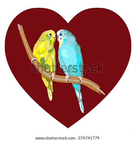 Sun Parakeets vector of birds isolated on white background, colorful parrot couple perched on branch, bird wildlife image illustrated in hand drawn  - stock vector