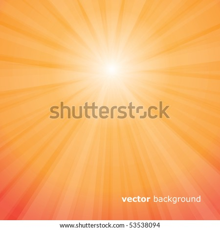 Sun Rays Vector - stock vector