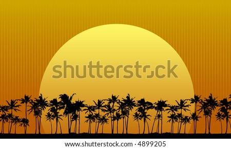 Sun setting behind palm trees - stock vector