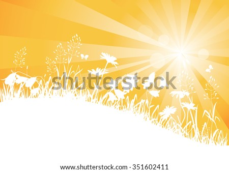 Sunbeams and silhouettes of wild flowers and herbs - stock vector