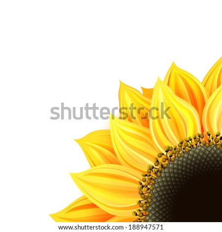 Sunflower card - stock vector