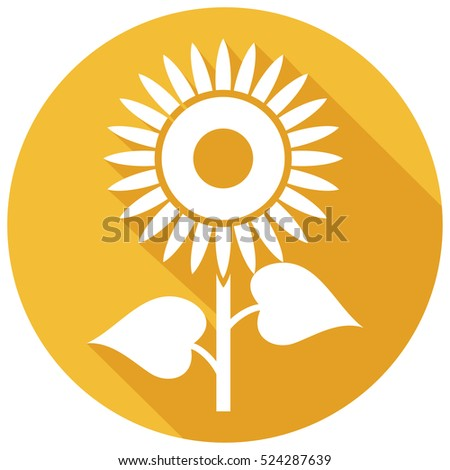 sunflower flat icon