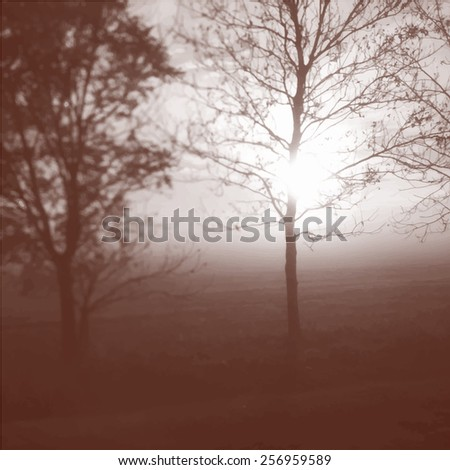 Sunrise and leafless tree. Vector illustration - stock vector