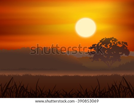 sunrise and silhouette tree forest vector - stock vector