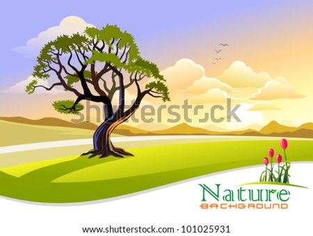 Sunset at Countryside with Graphic Wave Background