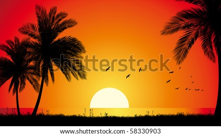 Sunset in a paradise beach. - stock vector