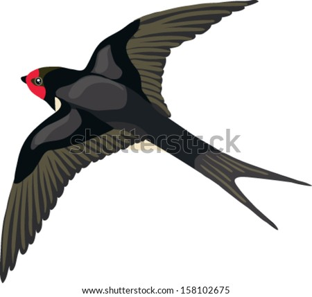 Swallow made in the style vector - stock vector