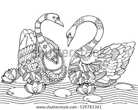swan coloring book for adults vector illustration anti stress coloring for adult tattoo