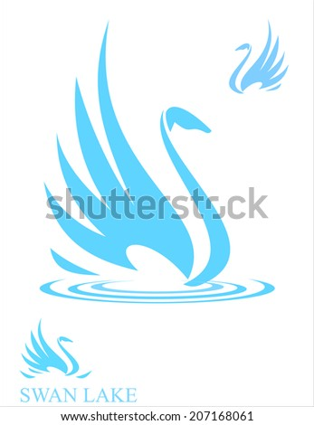 Swan. Swan in tranquility. Swan in soft color. - stock vector