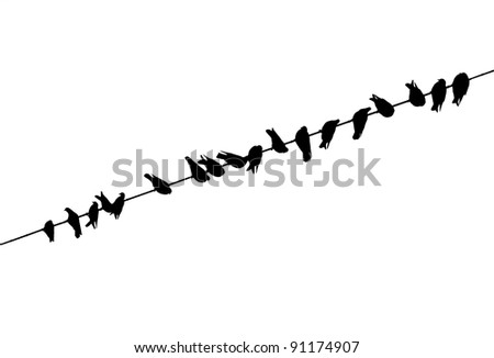 swarm of birds in a row on a powerline - stock vector