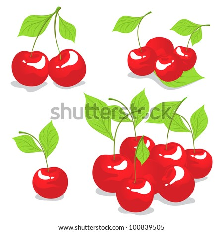 Sweet cherry isolated on white - stock vector