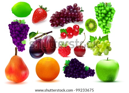 Sweet fruits. Vector illustration