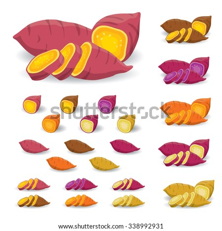 Sweet Potato Vector