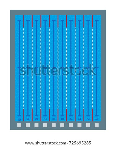 swimming pool deep transparent blue water top view of pool with lines and marks - Olympic Swimming Pool Top View