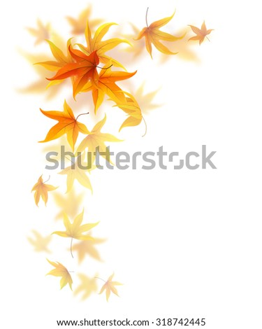 Swirl of falling autumn maple leaves on white background - stock vector
