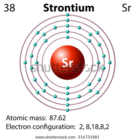 Symbol Electron Diagram Strontium Illustration Stock Vector